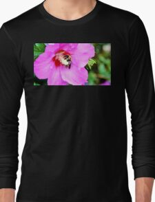 Bumble Bee Pollinating Pink Flower Long Sleeve T-Shirt