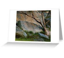 Gum & Granite Greeting Card