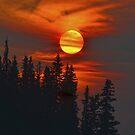 Cariboo Wildfire Sun by Skye Ryan-Evans