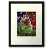 2015. Photography. By. Will Divinely Create/Animal_Groundhog Framed Print