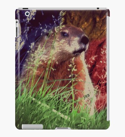 2015. Photography. By. Will Divinely Create/Animal_Groundhog iPad Case/Skin