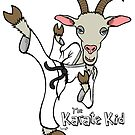 The Karate Kid by Brett Gilbert