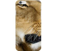723 lioness iPhone Case/Skin