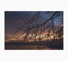 A Sunrise Through the Icy Branches Baby Tee