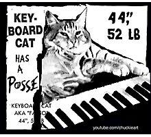 Keyboard Cat Posse Photographic Print