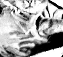 Keyboard Cat Posse Sticker