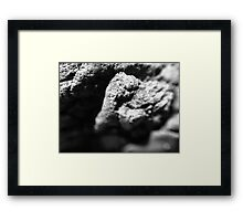 A Rock by the Sea Framed Print