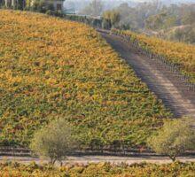 Vineyards in Sonoma County Sticker