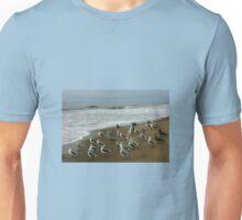 Gulls on Morning Watch. T-Shirt