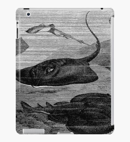 Sleep Ray  iPad Case/Skin