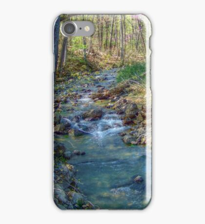 Spring Stream iPhone Case/Skin