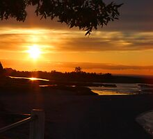Sunset Seven Two Four by Gilda Axelrod