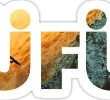 RUFUS / RÜFÜS DU SOL | 2016 Sticker