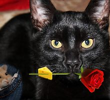 THE CAT & THE ROSE-THE ROSE HOLDING BAIT..THE MOUSE SITS HOPING IT DROPS  WHILE HE WAITS. by ✿✿ Bonita ✿✿ ђєℓℓσ