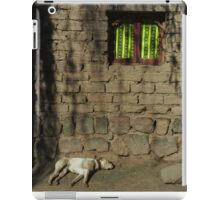 It's A Dogs World iPad Case/Skin