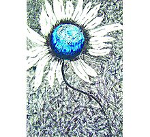 Blue Flower Photographic Print
