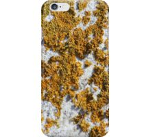 Tombstone with Yellow Lichen iPhone Case/Skin