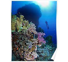 Underwaterworld - Habili Etnin Arug  Poster