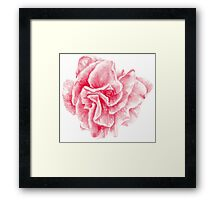 talisman . pink flower for love Framed Print