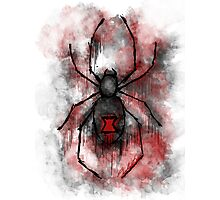 The Silent Spider Photographic Print