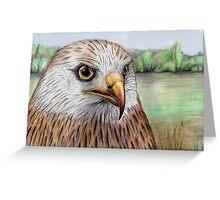 Red Kite Greeting Card