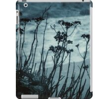 Midnight Dreams of the Sea iPad Case/Skin