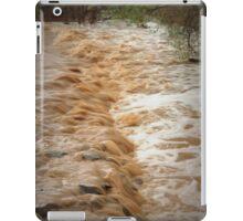 Muddy Waters iPad Case/Skin
