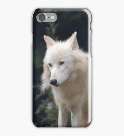 Grand Méchant Loup d'Arctique iPhone Case/Skin