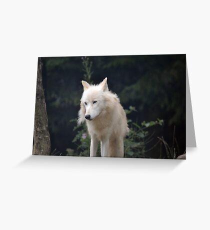 Grand Méchant Loup d'Arctique Greeting Card