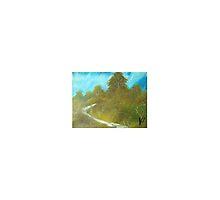 Hillside Track by Collin A. Clarke