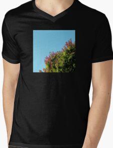 Fall Abstract Photo Mens V-Neck T-Shirt