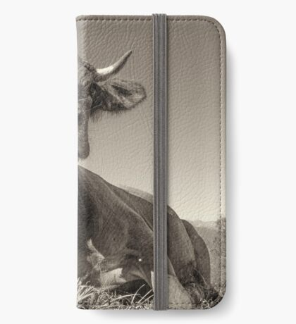 Tarine couch. rumine pillow_1150696 iPhone Wallet/Case/Skin