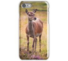 Scottish Deer iPhone Case/Skin