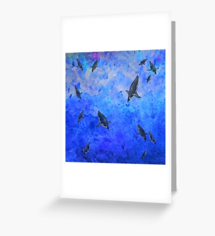 Water Penguins Greeting Card