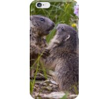 Sparring Partners iPhone Case/Skin