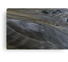 sea rush Canvas Print