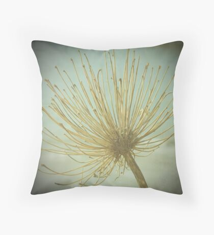 Beauty In Decay Throw Pillow