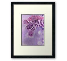 Lonely Zebra!  Framed Print
