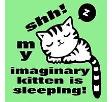 shh! kitten sleeping! Photographic Print