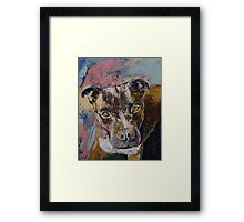 Brindle Bully Framed Print