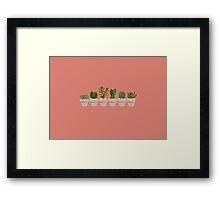 Cacti & Succulent  Framed Print