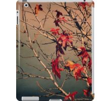 Yesterday iPad Case/Skin