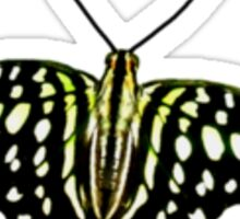 Real Butterfly No. 2 - Pale Green Spots Sticker
