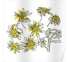 Manx #3 - Scruffy Yellow Poster