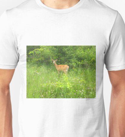 A Doe, A Deer Unisex T-Shirt