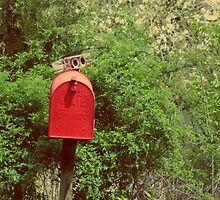 Red US Mail Box Pennsylvania Countryside Fine Art Photography by RedCoatStudio