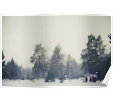 Falling snow Poster