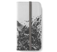 Defragmentation iPhone Wallet/Case/Skin