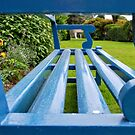 The Blue Bench by Paul Finnegan