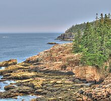 Acadia National Park: Otter Cliffs by Kadwell